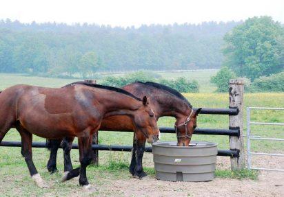 Flottørkar til hest
